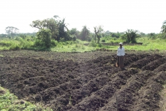 W-Planting-Sweet-Potatoes-at-Revival-Farm-2011